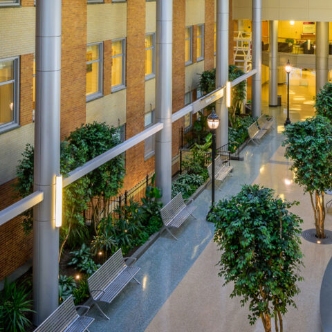 inside atrium with benches at Wilmington hospital